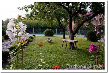 Jesień_2012-127[1]